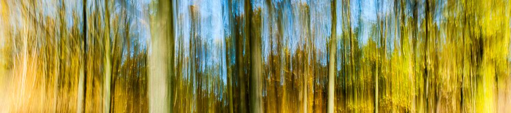 Herbstwaldpanorama © Fotokunstwerk von Mirko Joerg Kellner